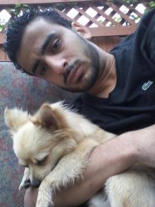 I want breed my dog  Listing Image