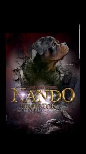 Nando Timit Tor Listing Image